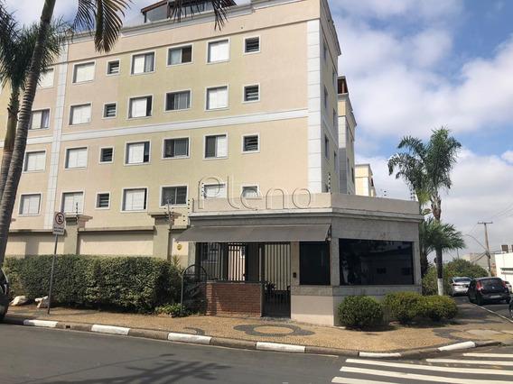 Apartamento À Venda Em Vila Joao Jorge - Ap016063