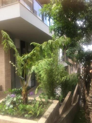 Apartamento En Venta Los Rosales 843-519