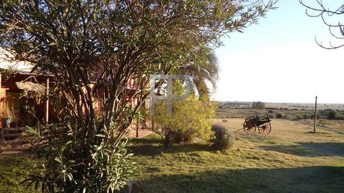 Quinta En Venta Minas 3 Dormitorios, 5 Hectáreas