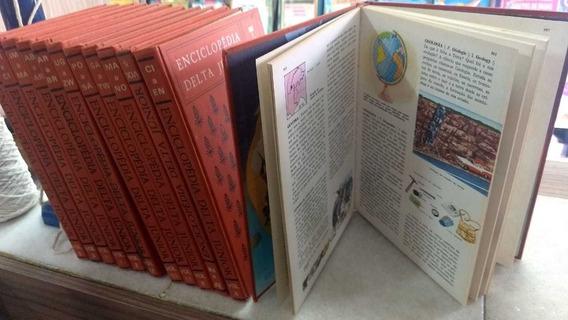 Enciclopédia Delta Júnior - 12 Volumes Editora Delta