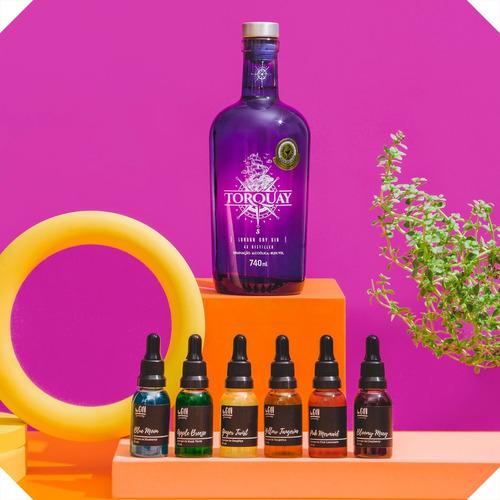 Combo Gin Torquay + 6 Xaropes Begin Spices