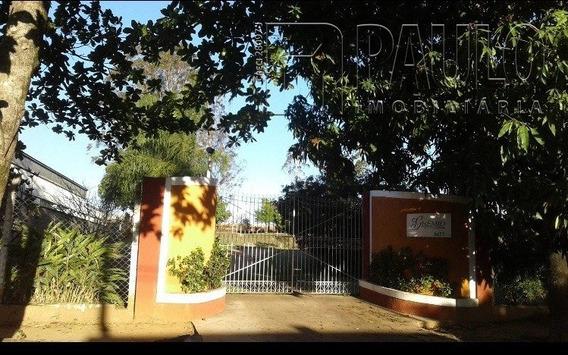 Chacara / Sitios / Fazenda - Centro (artemis) - Ref: 15143 - V-15143