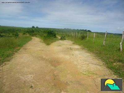 Fazenda Para Venda Em Porto Calvo - Fz-0065