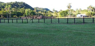 Fazenda A Venda Em Caracol - Ms (pecuária) - 1113