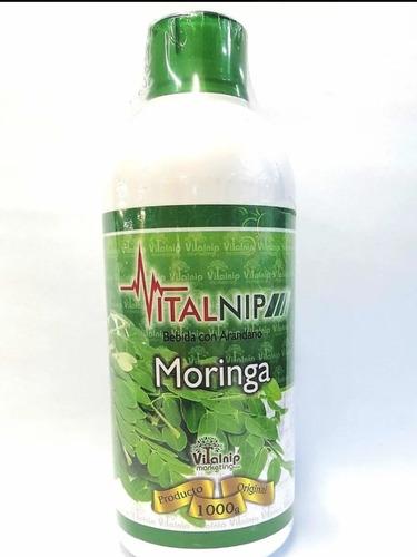 Moringa Litro 1000ml 100% Pura - L a $29