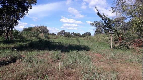 Terreno Comercial Para Venda Em Palmas, Plano Diretor Sul - 1131_2-904890