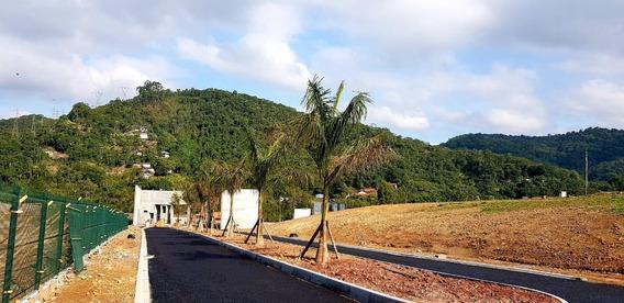 Terreno Residencial À Venda, Ponta Aguda, Blumenau. - Te0377
