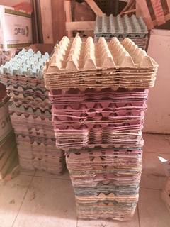 Cartones Maples Para Huevos En Buenas Condiciones