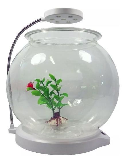 Aquário Beteira Em Acrílico Sunsun Ats-180 Com Luminária Led Para Bettas Ou Pequenos Peixes