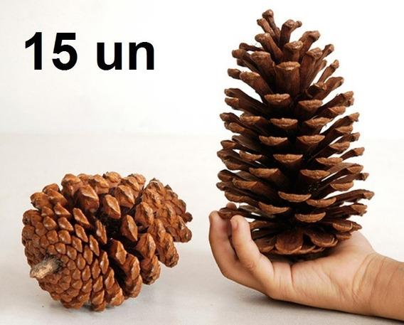 15 Pinhas Secas Naturais De Decorações Festas Natal Eventos