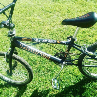 Bicicleta Cross Rodado 20 Liberty Pitbull