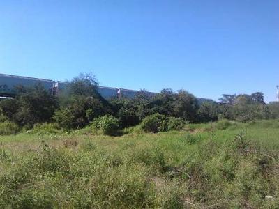 Amplio Terreno En Venta Cerca De La Zona Centro De Altamira.