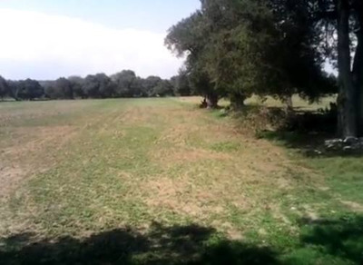 Terreno En Venta Tlaxcala