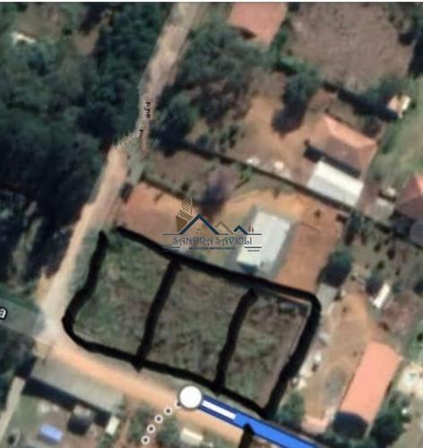 Imagem 1 de 5 de 3 Terrenos Para Investir! Negócio De Ocasião! - 440
