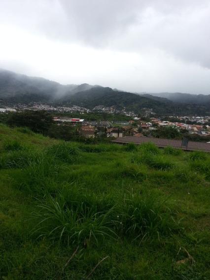 Se Vende Terreno En Colinas De Montealegre, Pinares