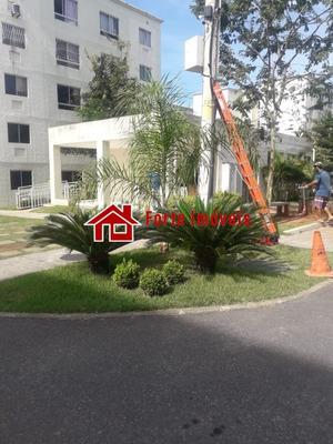 Apartamento - If910 - 34179412