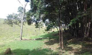 Sítio 30.000 Metros Quadrados Em São Tomé Das Letras, Sul De Minas , Bom De Água , Ótima Topografia, Beira Da Estrada. - 921