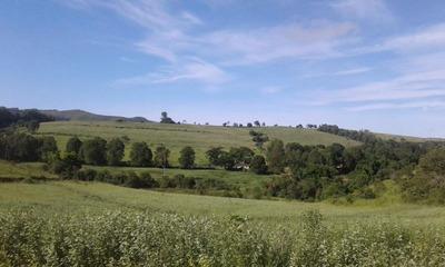 Fazenda Na Região Da Serra Da Canastra , Com 242 Ha , Muito Boa De Água, Área Para Grãos Ou Pastagem - 3419