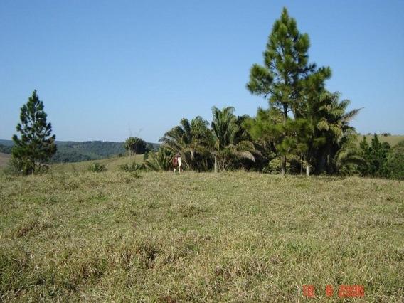 Área À Venda, 30000 M² Por R$ 200.000,00 - Boa Vista - São Miguel Arcanjo/sp - Ar0005 - 34356352