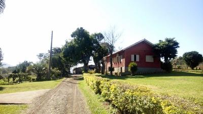 Chacara/fazenda/sitio - Conventos - Ref: 233564 - V-233564