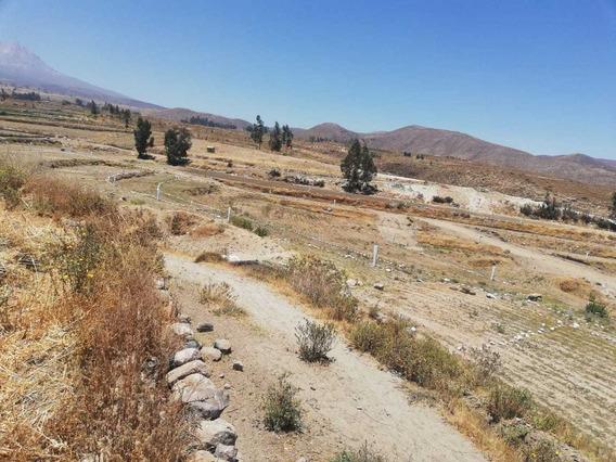 Terrenos Para Casa De Campo O Siembra