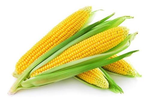 Imagen 1 de 2 de 50 Semillas De Maiz Dulce