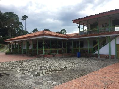 Se Vende Finca Pereira Para Ecohotel