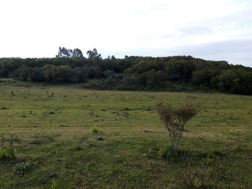 Campo En Sierras De Carape