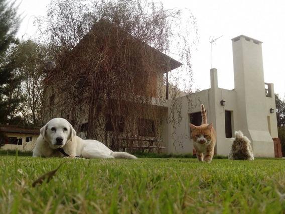 Casa Quinta En Barrio La Plantacion - Brandsen
