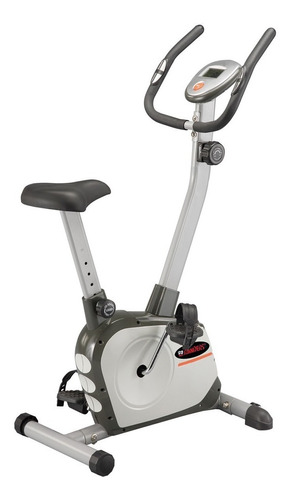 Bicicleta Vertical Fija Magnetica Randers Arg401 Rueda 5kg