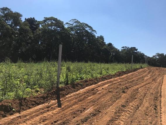 Plante Em Seu Terreno 600 M2 Com Ruas Abertas E Demarcação J