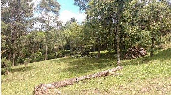 Sitio - Campestre Do Tigre - Ref: 3095 - V-gi3101