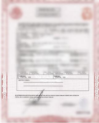 Actas Rc Servicios De Imprenta, Documentos Ofi, Credenciales