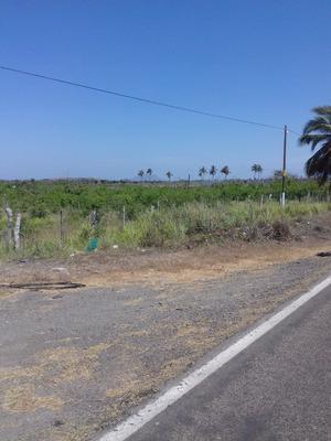 20 Hectarias A 200 Metros De La Playa A Orilla De Carretera