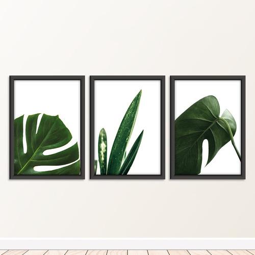 Imagem 1 de 6 de Quadros Decorativos Botanico Especial ***