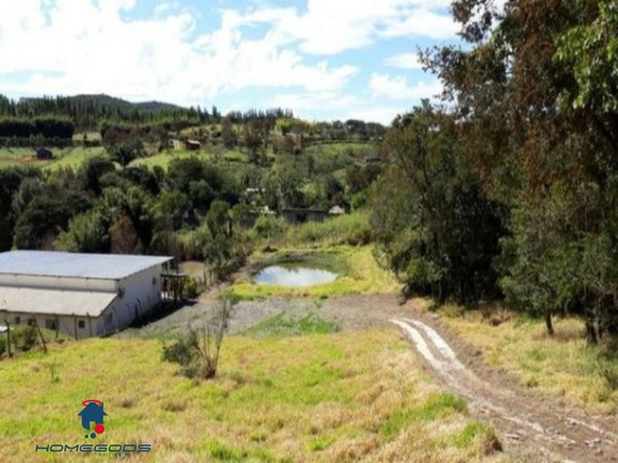 Sitio Em Joaquim Egidio - St00006 - 34379812