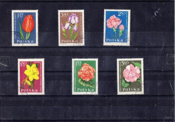 Tematicas Flores !!!! Polonia
