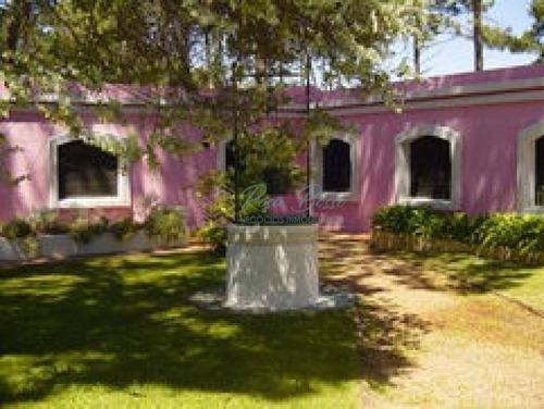 Casa En Punta Ballena, Punta Ballena   Rosa Bosso Inmobiliaria Ref:3559- Ref: 3559