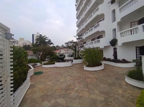Imagem 1 de 19 de Apartamento À Venda Em Vila Rossi Borghi E Siqueira - Ap008644