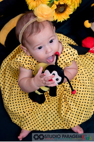 Faixa Bebê Menina Luxo Festa Aniversário Infantil Abelinha