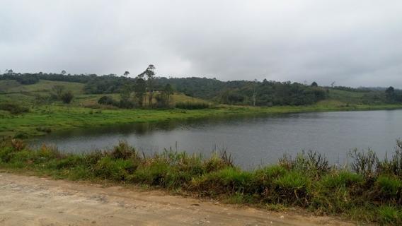 Area Rural Biritiba-ussu Mogi Das Cruzes Sp Brasil - 866