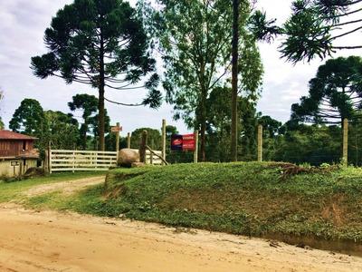 Chácara Para Venda No Rural Em Agudos Do Sul - Pr - 1377