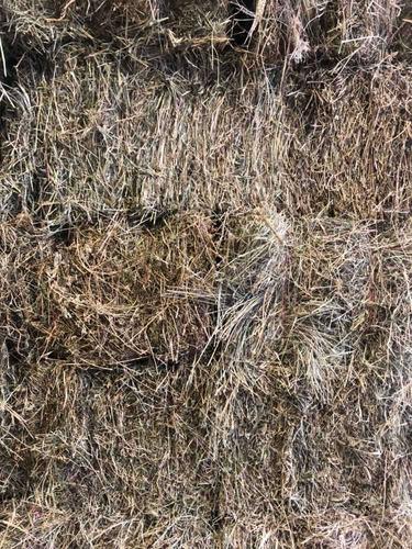 Imagen 1 de 4 de Fardos Alfalfa Mezcla