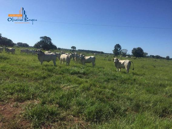 Fazenda À Venda, Rural, Lagoa Da Confusão. - Fa0024