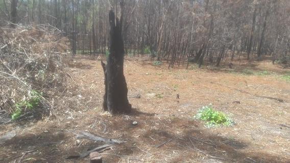 Vendo O Permuto Terreno Limpio Y Relleno En La Esmeralda