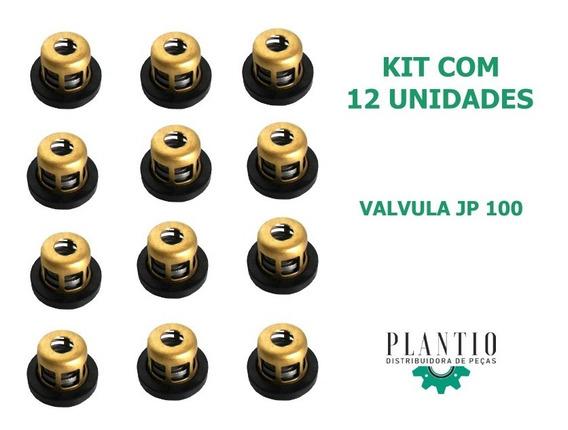 Kit 12 Válvulas Bomba Pulv. Jacto Jp-75 Jp-100 - Cod 407825