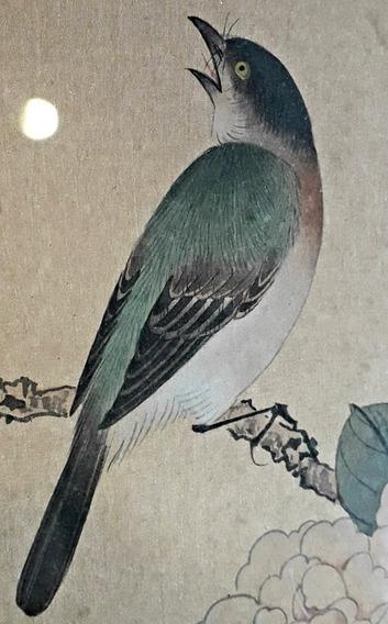 Antigua Obra Dibujo Arte Oriental China Japón Ave Acuarela