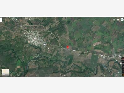 Rancho En Venta Autopista Xalapa - Veracruz