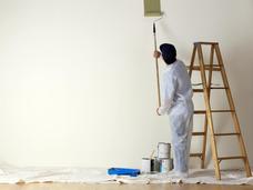 Pintores Profesionales - Servicio Pintura General