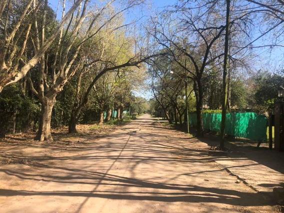 Terreno En Gobernador Udaondo, Haras Myriam, Parque Leloir